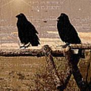 Singing Crows Art Print