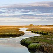 Sippewissett Marsh Art Print