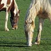 Sister Horses Art Print