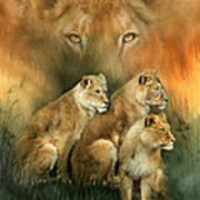 Sisterhood Of The Lions Art Print