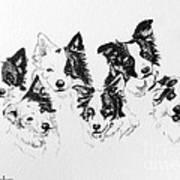 Six Packed Art Print