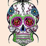 Skull 11 Art Print