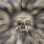 Skull - Fear And Trembling  Art Print