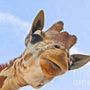 Sky High Giraffe Art Print