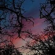 Sky In Blue And Magenta Art Print