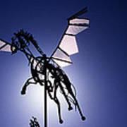 Skyhorse Art Print