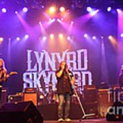 Skynyrd-group-7820 Art Print