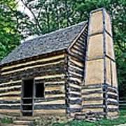 Slave Cabin Art Print