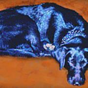 Sleeping Blue Dog Labrador Retriever Art Print