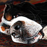 Sleeping Dogs Lie Art Print