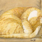 Sleeping Orange Tabby Cat Cathy Peek Animals Art Print