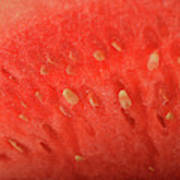 Slice Of Watermelon (detail) Art Print