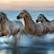 Slow Motion Horses Art Print