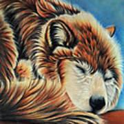 Slumber Time Art Print
