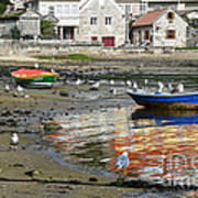 Small Boats And Seagulls In Galicia Art Print