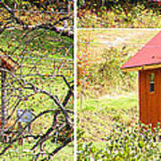 Small Cabin In Stereo Art Print