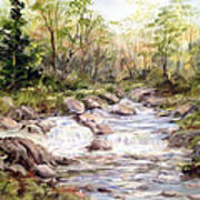 Small Falls In The Forest Art Print