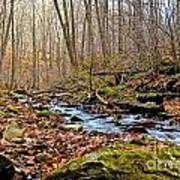 Small Pennsylvania Creek In Autumn Art Print