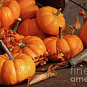 Small Pumpkins With Wood Bucket  Art Print by Sandra Cunningham