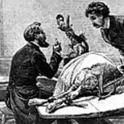 Smallpox Vaccine, 1883 Art Print