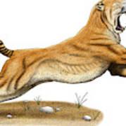 Smilodon Saber-toothed Tiger Art Print