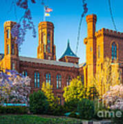 Smithsonian Castle Print by Inge Johnsson