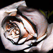 Smoked Rose Art Print
