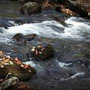 Smokey Mountain Stream In Autumn No.2 Art Print