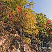 Smoky Mountain Autumn Art Print