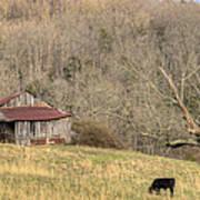 Smoky Mountain Barn 10 Art Print