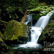Smoky Mountain Falls Art Print