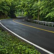 Smoky Mountain Road After Spring Rain E70 Art Print