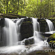 Smoky Mountain Waterfall - D008427 Art Print