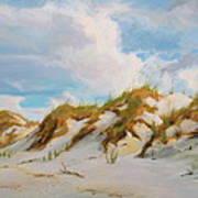 Smyrna Dunes Art Print