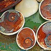 Snail Stones Art Print
