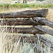 Snake Fence And Sage Brush Art Print