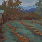 Snohomish Pumpkin Patch Art Print