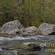 Snoqualmie River Art Print