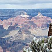 Snow At The Grand Canyon Art Print