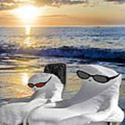 Snow Bird Vacation Art Print