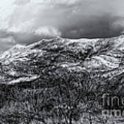 Snow Capped 45 Art Print