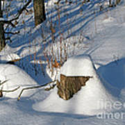 Snow-capped Art Print