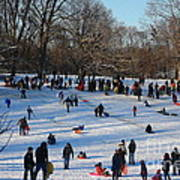 Snow Day - Fun Day At The Park Art Print
