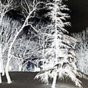 Snow Day Inverted Art Print