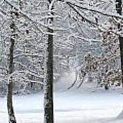 Snow Day Iv Art Print