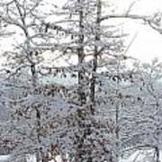 Snow Day V Art Print