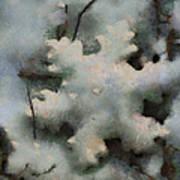 Snow Flake 03 Photo Art Art Print