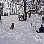 Snow Fun Art Print