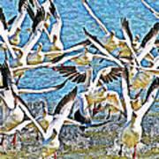 Snow Geese Panic Art Print