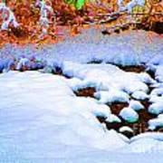 Snow In Color Art Print